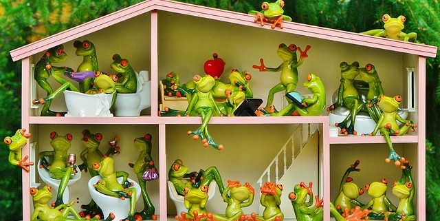 frogs-1382827_640 (1)