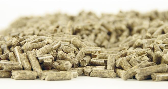 Saco de pellets de madera (100 % conifera) (15 kg.)